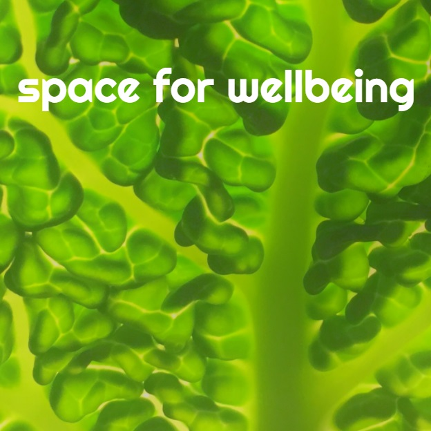 space for wellbeing logo